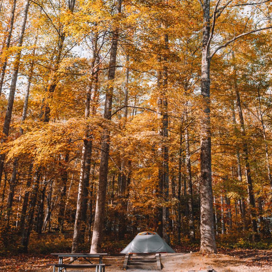 Bleib doch, wo de wechkommst –wie Campingplätze NRW 2019 noch lebenswerter machen